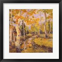 Framed Four Seasons Aspens III