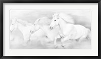 All the White Horses Framed Print