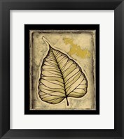 Leaf Panel I Framed Print