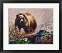 Framed Beary Delight
