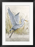 Heron Sanctuary I Framed Print