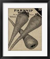 Vintage Seed Pack IV Framed Print