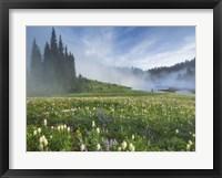 Framed Mt. Rainier Wildflowers
