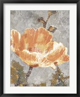 Framed Spice Poppy I