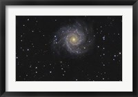 Framed Messier 74, A Spiral Galaxy in the Constellation Pisces