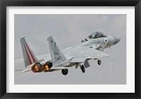 Framed F-15D Eagle Baz Aircraft of the Israeli Air Force