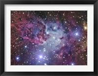 Framed Fox Fur Nebula