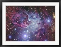 Framed Fox Fur Nebula
