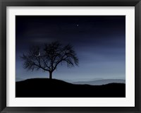 Framed Tree and the Moon