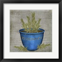 Herb Rosemary Framed Print