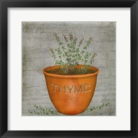 Herb Thyme Framed Print