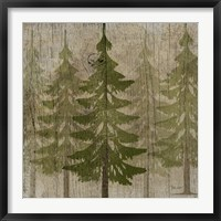 Framed Pines