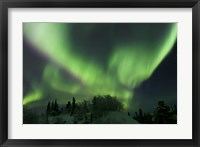 Framed Aurora Borealis Takes Flight
