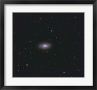 Framed Black Eye Galaxy