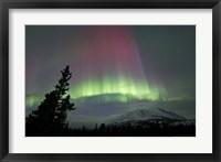 Framed Red and Green Aurora Borealis over Carcross Desert