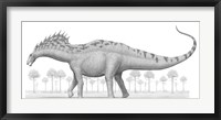 Framed Amargasaurus Cazaui Dinosaur from the Early Cretaceous Period
