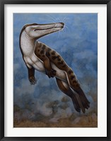 Framed Ambulocetus Natans
