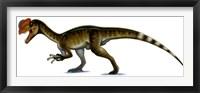 Framed Dilophosaurus Wetherilli