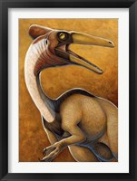 Framed Pelicanimimus