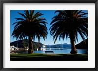 Framed Picton, Marlborough, South Island, New Zealand