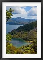 Framed Queen Charlotte Track, Marlborough Sounds, South Island, New Zealand