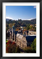 Framed University of Otago, Dunedin, New Zealand