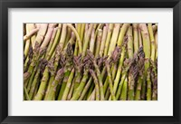 Framed Asparagus, Marlborough, South Island, New Zealand