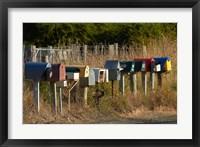 Framed Rural Letterboxes, Otago Peninsula, Dunedin, South Island, New Zealand
