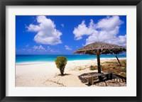 Framed Coco Point Beach, Barbuda, Antigua