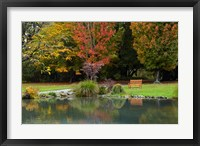 Framed Autumn Color in Hagley Park, Christchurch, Canterbury, New Zealand