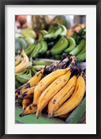 Framed Fresh bananas at the local market in St John's, Antigua