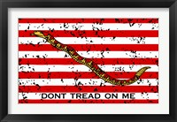 Framed First Navy Jack