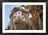 Framed Scarecrow and Dead Corn Husks, Carnation, Washington