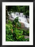 Framed Rainforest waterfall, Serra da Bocaina NP, Parati, Brazil (vertical)