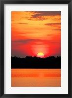 Framed Amazon Jungle, Brazil, Sunset