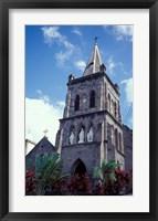 Framed Roseau, Dominica