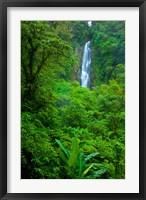 Framed Father Falls, Trafalgar Falls, Dominica West Indies