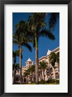 Framed Palm tree, Riu Palace, Bavaro Beach, Higuey, Punta Cana, Dominican Republic