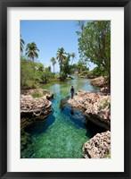 Framed Alligator Hole, Black River Town, Jamaica, Caribbean