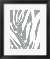Framed Seagrass I