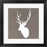 Buck I Framed Print