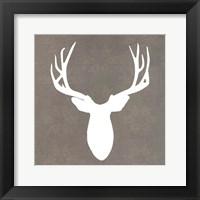 Buck II Framed Print