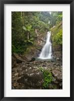 Framed Puerto Rico, El Yunque, La Mina Waterfalls