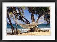 Framed Hammock tied between trees, North Shore beach, St Croix, US Virgin Islands