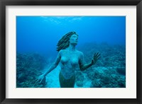 Framed Cayman Islands, Mermaid statue, coral reef