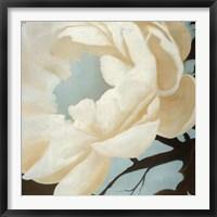 Framed Flora Study
