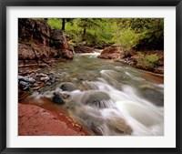 Framed Lost Horse Creek, Wateron Lakes National Park, Alberta, Canada