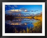 Framed Maskinonge Lake, Waterton Lakes National Park, Alberta