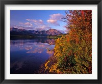 Framed Maskinonge Lake with mountains in the background, Waterton Lakes National Park, Alberta