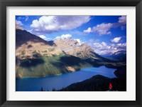 Framed Hiker Overlooking Peyto Lake, Banff National Park, Alberta, Canada
